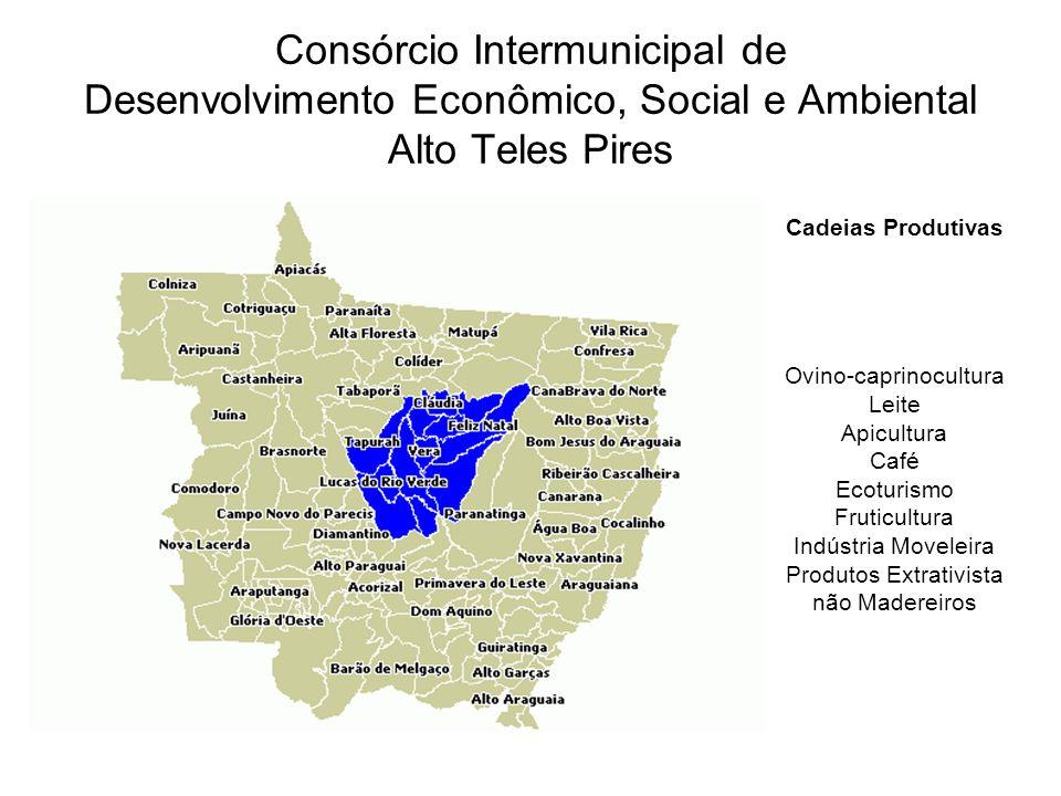 Consórcio Intermunicipal de Desenvolvimento Econômico, Social e Ambiental Alto Teles Pires Cadeias Produtivas Ovino-caprinocultura Leite Apicultura Ca