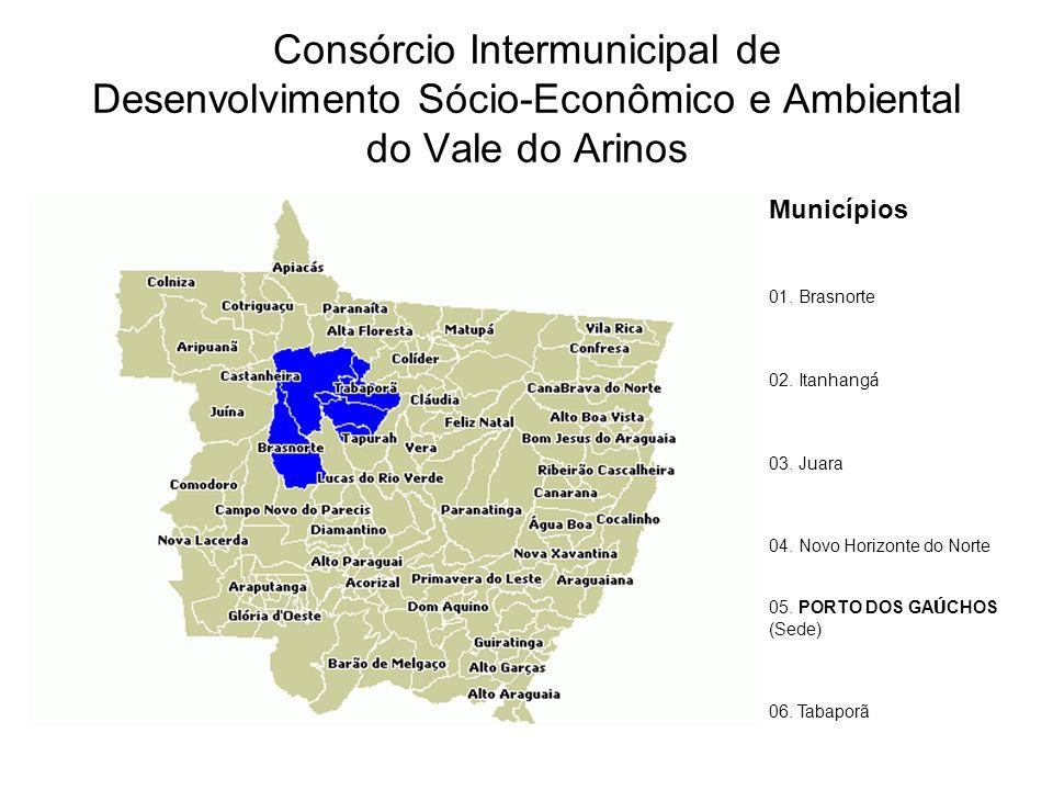 Consórcio Intermunicipal de Desenvolvimento Sócio-Econômico e Ambiental do Vale do Arinos Municípios 01.