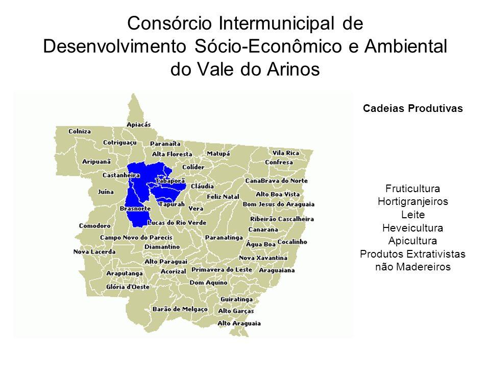 Consórcio Intermunicipal de Desenvolvimento Sócio-Econômico e Ambiental do Vale do Arinos Cadeias Produtivas Fruticultura Hortigranjeiros Leite Heveic