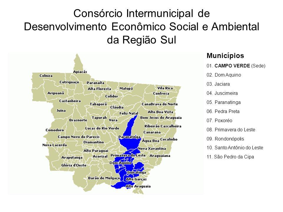 Consórcio Intermunicipal de Desenvolvimento Econômico Social e Ambiental da Região Sul Municípios 01.