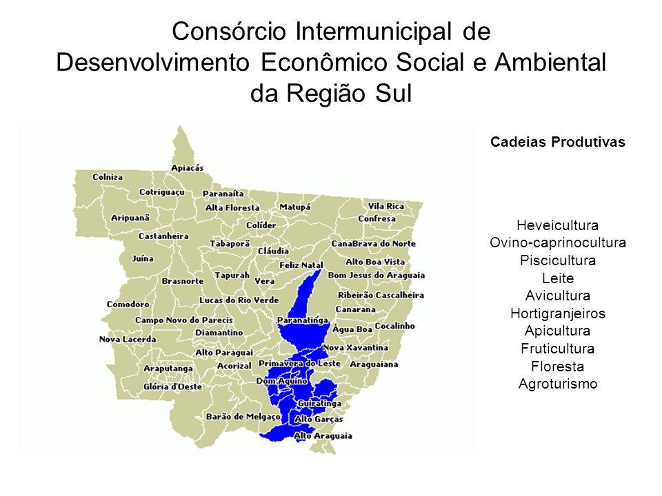 Consórcio Intermunicipal de Desenvolvimento Econômico Social e Ambiental da Região Sul Cadeias Produtivas Heveicultura Ovino-caprinocultura Piscicultu