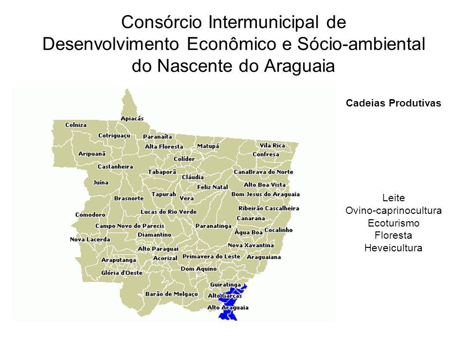 Consórcio Intermunicipal de Desenvolvimento Econômico e Sócio-ambiental do Nascente do Araguaia Cadeias Produtivas Leite Ovino-caprinocultura Ecoturismo Floresta Heveicultura