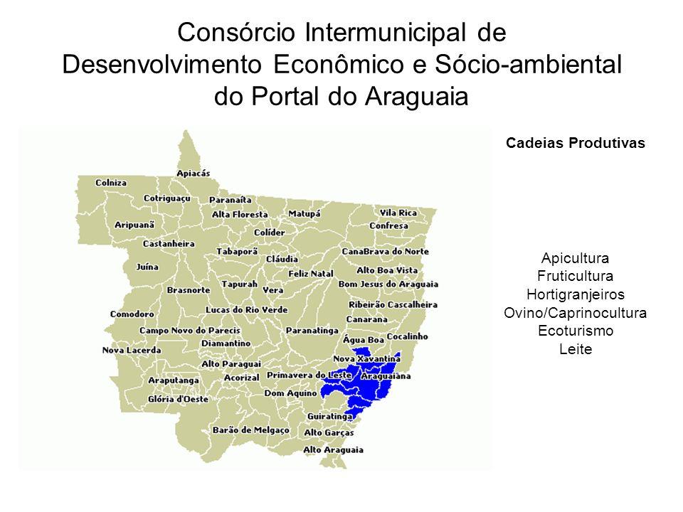 Consórcio Intermunicipal de Desenvolvimento Econômico e Sócio-ambiental do Portal do Araguaia Cadeias Produtivas Apicultura Fruticultura Hortigranjeiros Ovino/Caprinocultura Ecoturismo Leite
