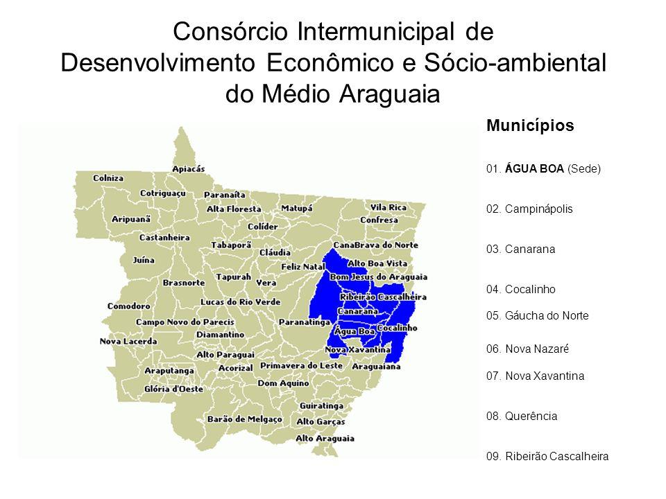 Consórcio Intermunicipal de Desenvolvimento Econômico e Sócio-ambiental do Médio Araguaia Municípios 01. Á GUA BOA (Sede) 02. Campin á polis 03. Canar