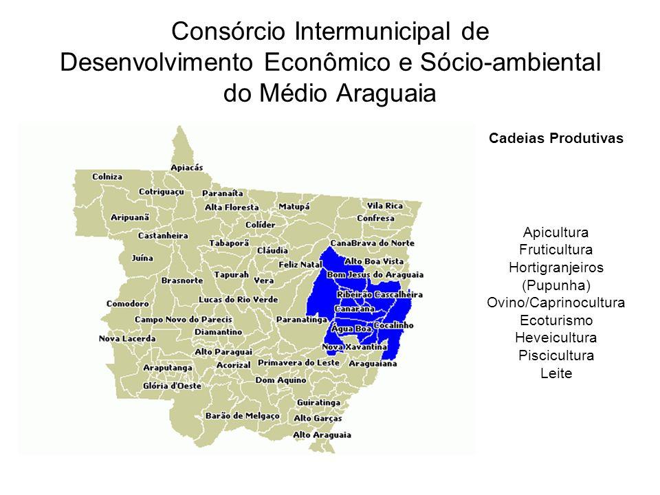 Consórcio Intermunicipal de Desenvolvimento Econômico e Sócio-ambiental do Médio Araguaia Cadeias Produtivas Apicultura Fruticultura Hortigranjeiros (