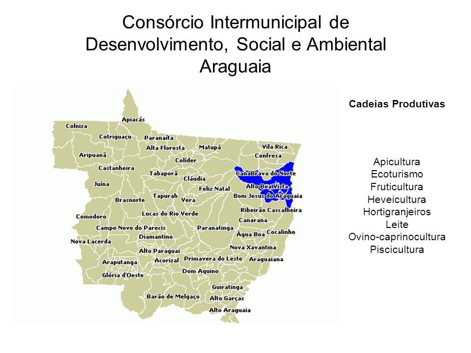 Cadeias Produtivas Apicultura Ecoturismo Fruticultura Heveicultura Hortigranjeiros Leite Ovino-caprinocultura Piscicultura Consórcio Intermunicipal de Desenvolvimento, Social e Ambiental Araguaia