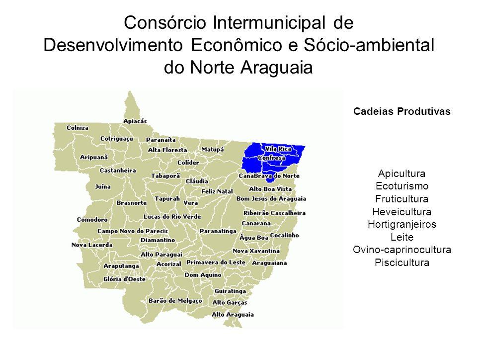 Consórcio Intermunicipal de Desenvolvimento Econômico e Sócio-ambiental do Norte Araguaia Cadeias Produtivas Apicultura Ecoturismo Fruticultura Heveicultura Hortigranjeiros Leite Ovino-caprinocultura Piscicultura