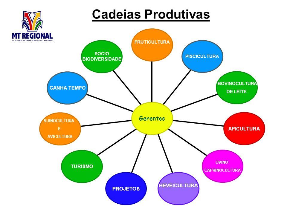 Cadeias Produtivas SOCIO BIODIVERSIDADE GANHA TEMPO SUINOCULTURA E AVICULTURA TURISMO PROJETOS HEVEICULTURA OVINO- CAPRINOCULTURA APICULTURA BOVINOCULTURA DE LEITE PISCICULTURA FRUTICULTURA Gerentes