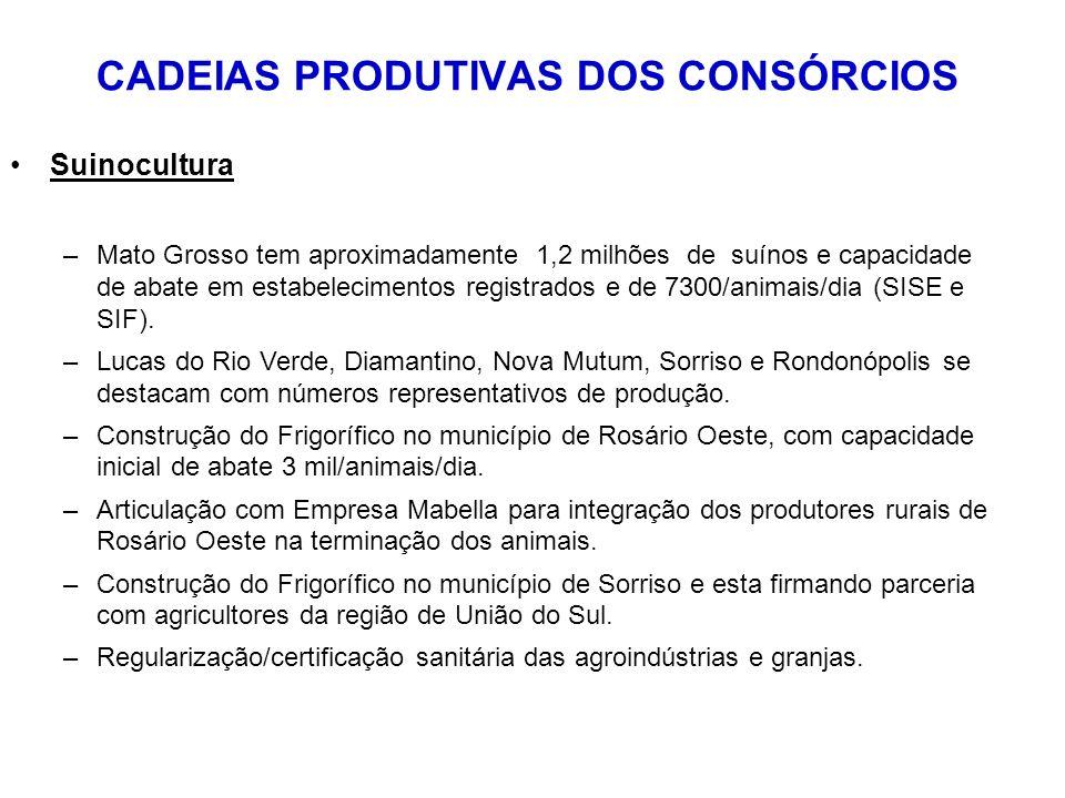 CADEIAS PRODUTIVAS DOS CONSÓRCIOS Suinocultura –Mato Grosso tem aproximadamente 1,2 milhões de suínos e capacidade de abate em estabelecimentos registrados e de 7300/animais/dia (SISE e SIF).
