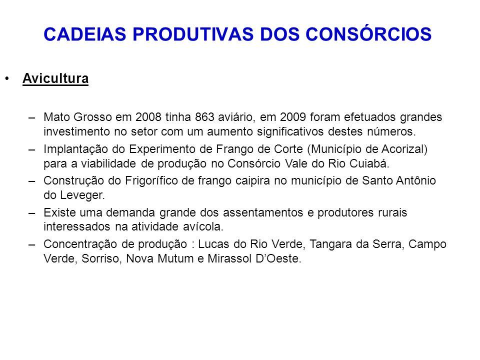 CADEIAS PRODUTIVAS DOS CONSÓRCIOS Avicultura –Mato Grosso em 2008 tinha 863 aviário, em 2009 foram efetuados grandes investimento no setor com um aumento significativos destes números.