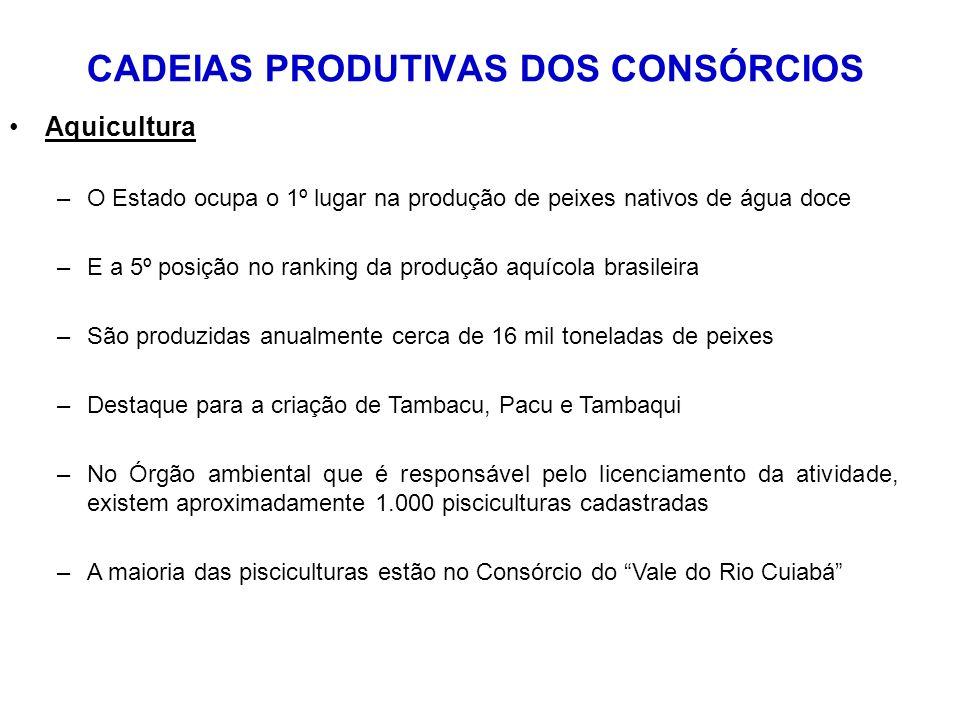 Aquicultura –O Estado ocupa o 1º lugar na produção de peixes nativos de água doce –E a 5º posição no ranking da produção aquícola brasileira –São prod
