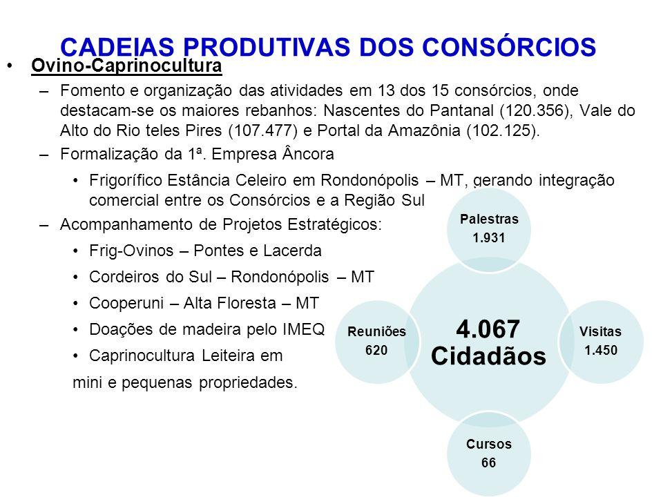 Ovino-Caprinocultura –Fomento e organização das atividades em 13 dos 15 consórcios, onde destacam-se os maiores rebanhos: Nascentes do Pantanal (120.356), Vale do Alto do Rio teles Pires (107.477) e Portal da Amazônia (102.125).
