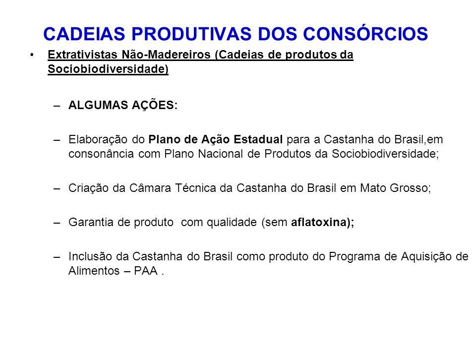 CADEIAS PRODUTIVAS DOS CONSÓRCIOS Extrativistas Não-Madereiros (Cadeias de produtos da Sociobiodiversidade) –ALGUMAS AÇÕES: –Elaboração do Plano de Aç