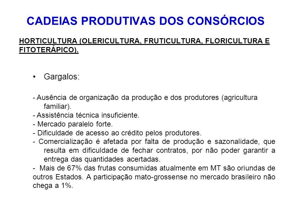 HORTICULTURA (OLERICULTURA, FRUTICULTURA, FLORICULTURA E FITOTERÁPICO). Gargalos: - Ausência de organização da produção e dos produtores (agricultura