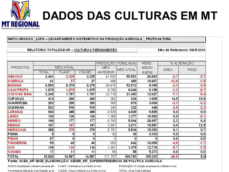 DADOS DAS CULTURAS EM MT