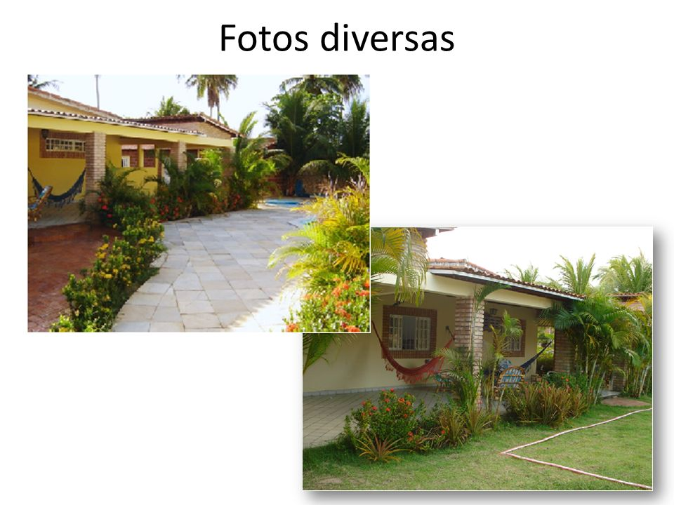 Fotos diversas