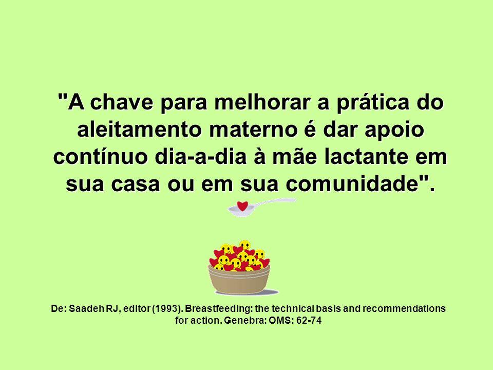 O QUE É APOIO .HOLANDA, Aurélio B.