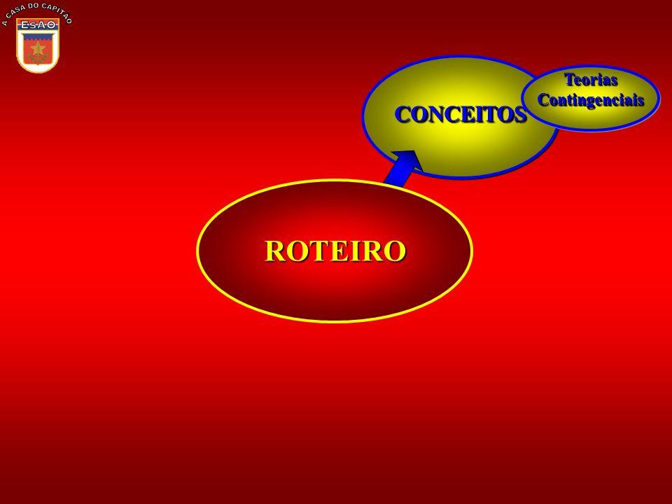 CONCEITOSCONCEITOS TeoriasContingenciaisTeoriasContingenciais ROTEIRO