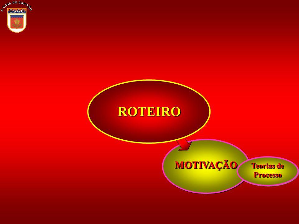 MOTIVAÇÃOMOTIVAÇÃO Teorias de Processo ROTEIRO