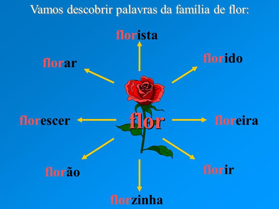 flor florista florido floreira florir florzinha florão florescer florar Vamos descobrir palavras da família de flor: