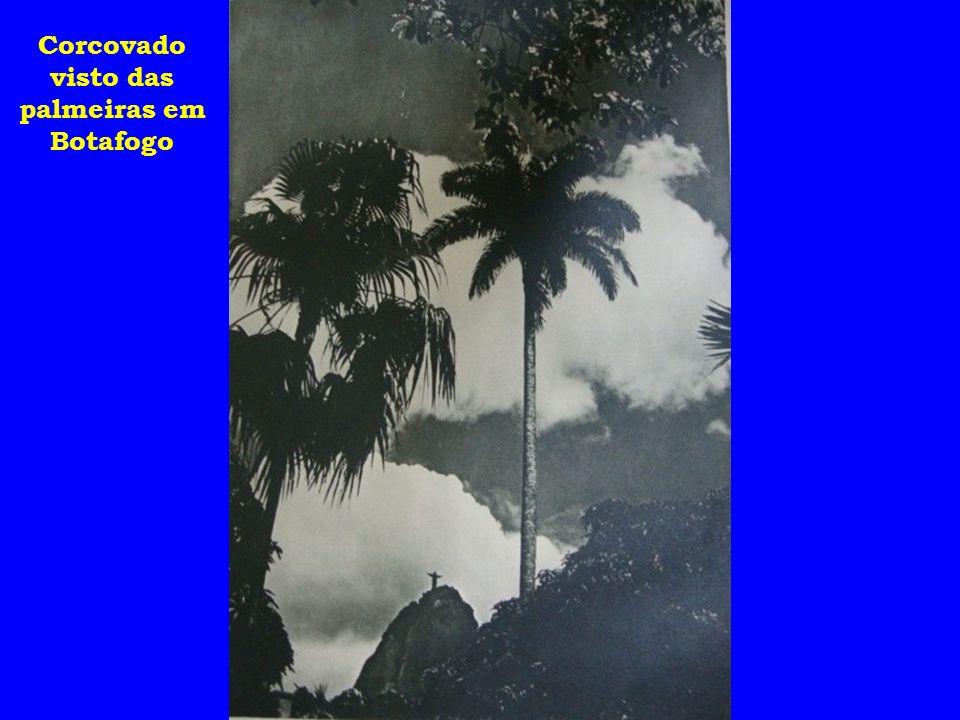 Corcovado visto das palmeiras em Botafogo