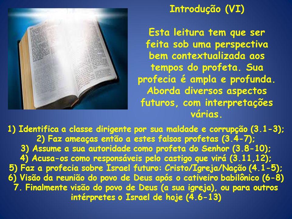 Introdução (VI) Esta leitura tem que ser feita sob uma perspectiva bem contextualizada aos tempos do profeta. Sua profecia é ampla e profunda. Aborda