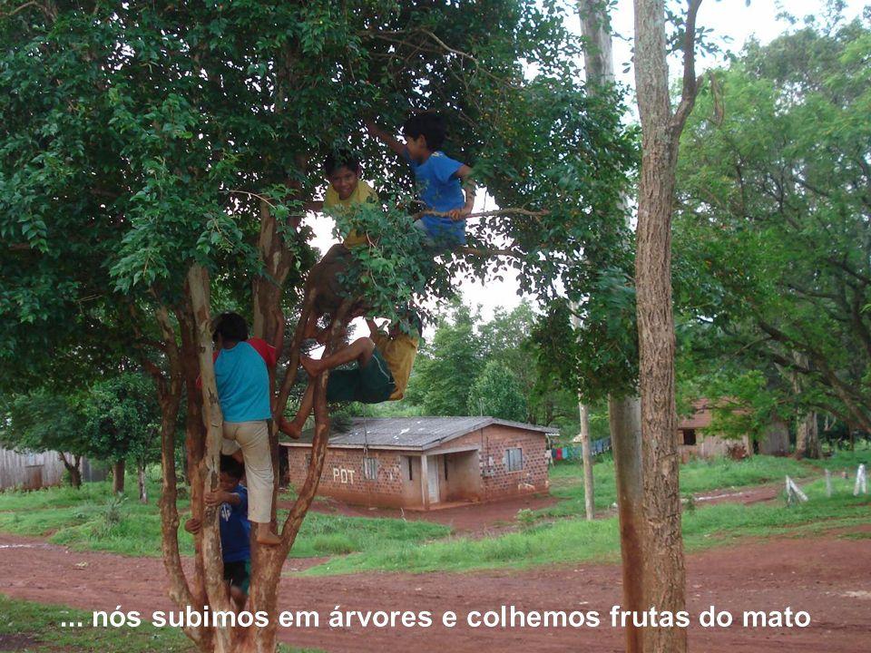 Na nossa aldeia...... nós subimos em árvores e colhemos frutas do mato
