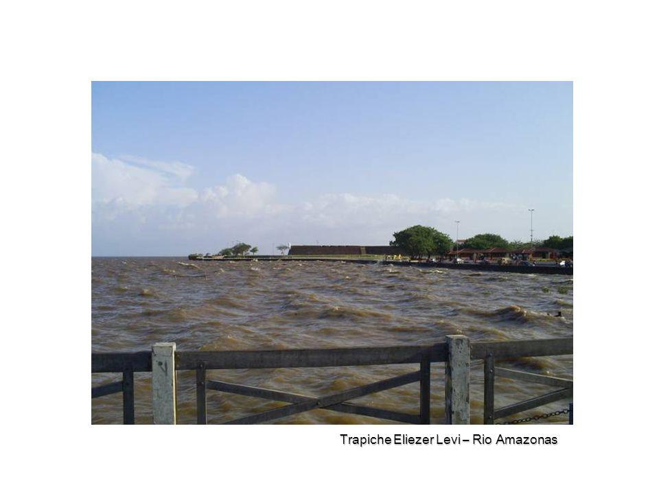 Trapiche Eliezer Levi – Rio Amazonas