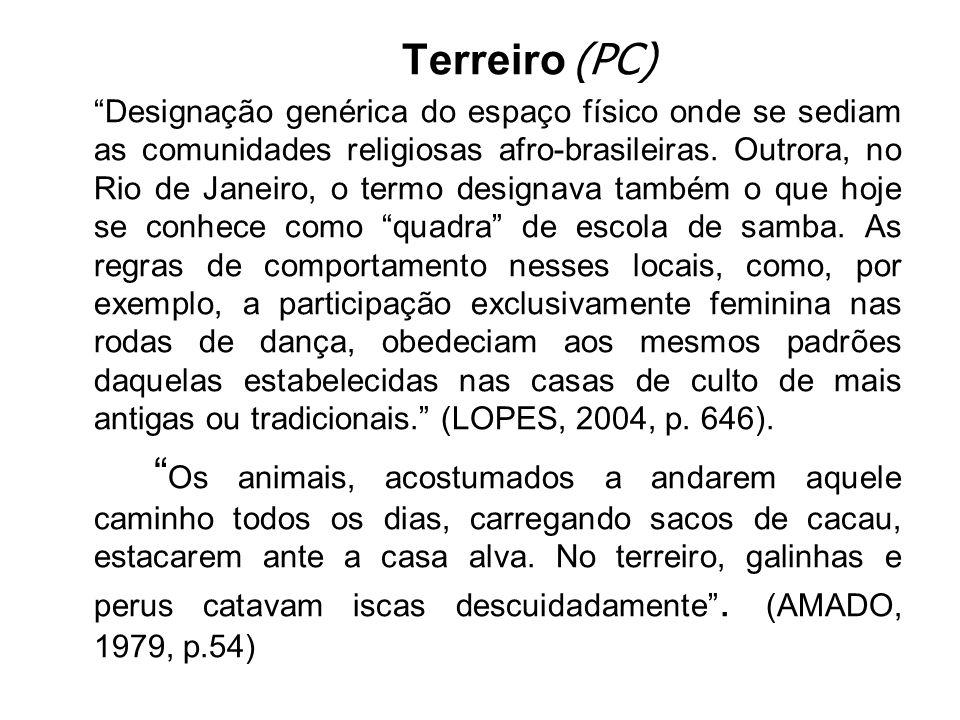 A palavra terreiro em O Pais do Carnaval, recebe um sentido diferente dos designados por Lopes (2004).