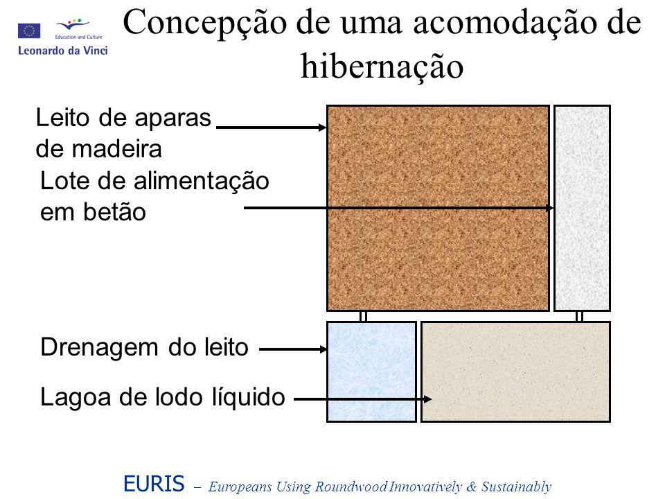 Concepção de uma acomodação de hibernação EURIS – Europeans Using Roundwood Innovatively & Sustainably Leito de aparas de madeira Lote de alimentação