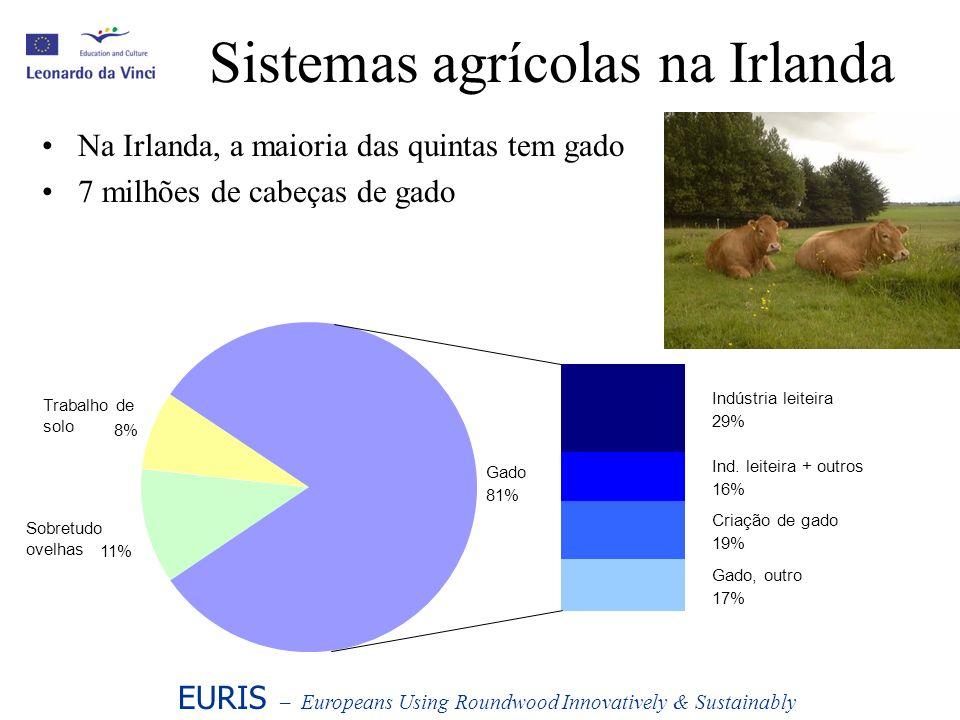 Sistemas agrícolas na Irlanda Na Irlanda, a maioria das quintas tem gado 7 milhões de cabeças de gado Trabalho de solo Gado 81% Gado, outro 17% Criaçã