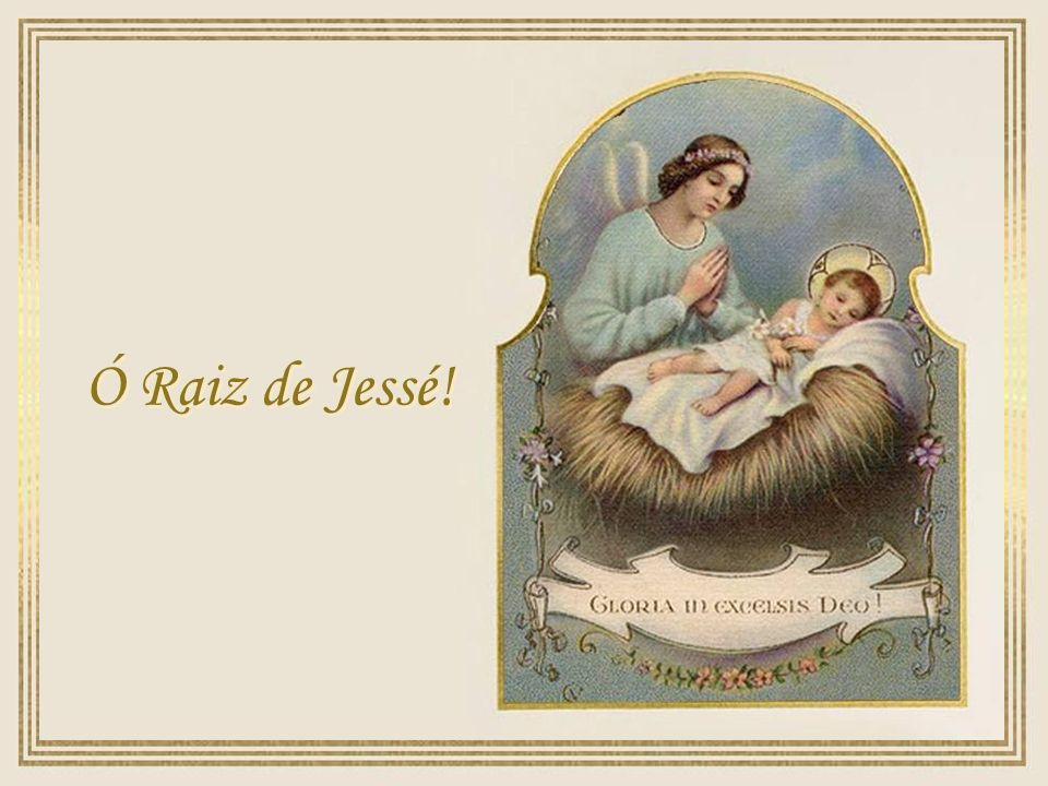 Ó Raiz de Jessé!