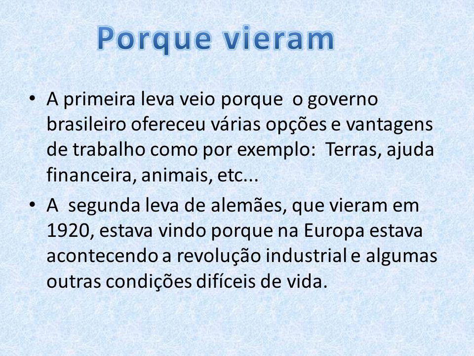 A primeira leva veio porque o governo brasileiro ofereceu várias opções e vantagens de trabalho como por exemplo: Terras, ajuda financeira, animais, e