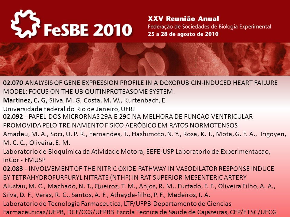 32.041 - ADENOSINE TRIPHOSPHATE AT THE PVN LEVEL INCREASES SYMPATHETIC NERVE ACTIVITY Ferreira-neto, H.