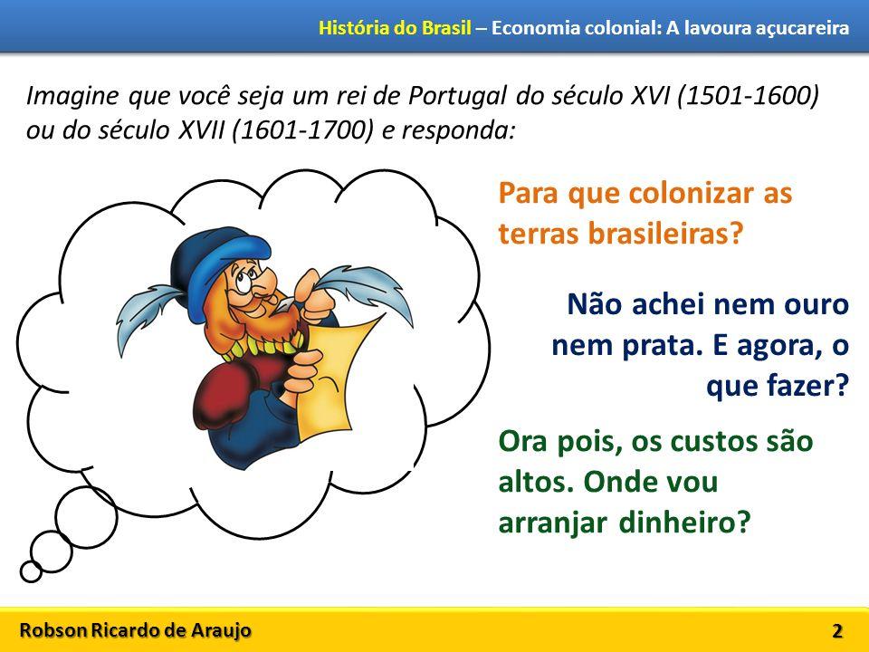 Robson Ricardo de Araujo História do Brasil – Economia colonial: A lavoura açucareira 3 Portugal decide implantar a indústria açucareira no Brasil.