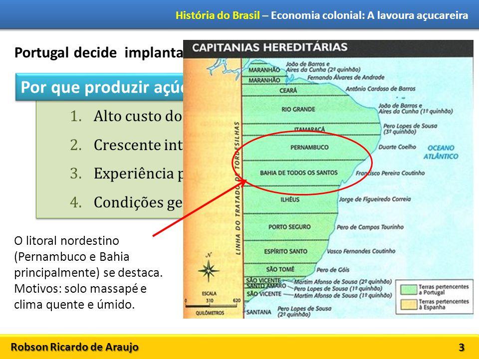 Robson Ricardo de Araujo História do Brasil – Economia colonial: A lavoura açucareira 3 Portugal decide implantar a indústria açucareira no Brasil. 1.