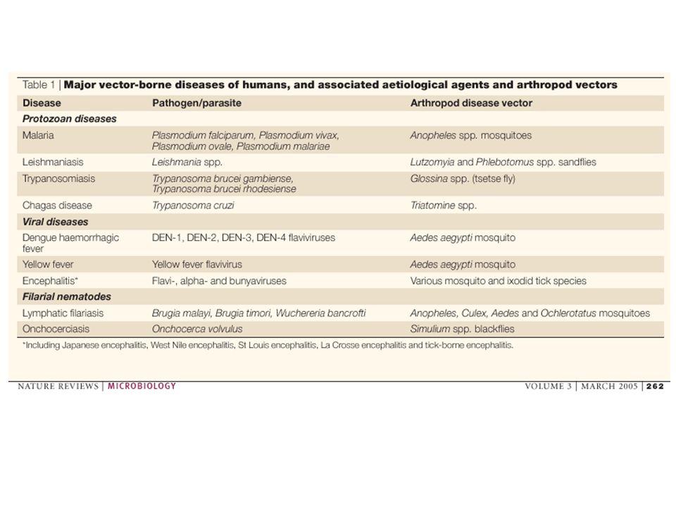 Controle de vetores tem se mostrado eficiente para o controle de doenças Exemplos: (Programa de controle por Inseticida) erradicação da Malária nos países de clima temperado do Hemisfério Norte e na Argentina redução da Oncocercose em 11 países do oeste da África