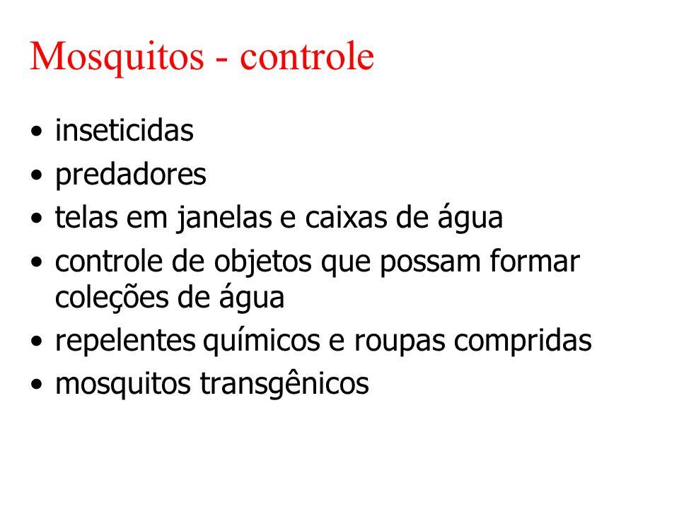Mosquitos - controle inseticidas predadores telas em janelas e caixas de água controle de objetos que possam formar coleções de água repelentes químicos e roupas compridas mosquitos transgênicos