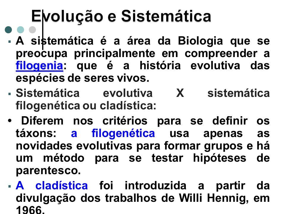 filogenia A sistemática é a área da Biologia que se preocupa principalmente em compreender a filogenia: que é a história evolutiva das espécies de seres vivos.