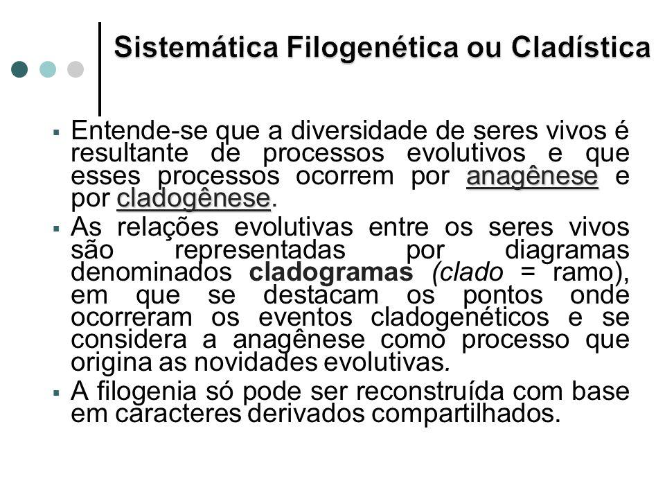 anagênese cladogênese Entende-se que a diversidade de seres vivos é resultante de processos evolutivos e que esses processos ocorrem por anagênese e por cladogênese.