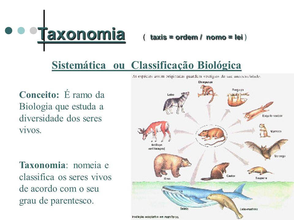 Sistemática ou Classificação Biológica Conceito: É ramo da Biologia que estuda a diversidade dos seres vivos.