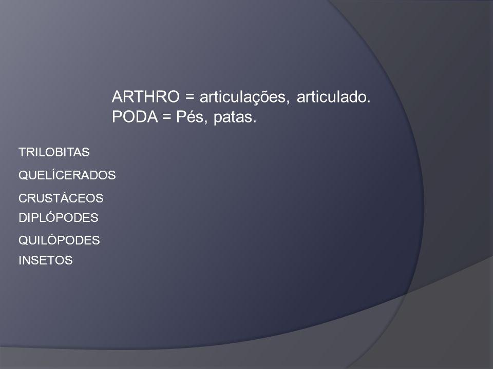 ARTHRO = articulações, articulado. PODA = Pés, patas. TRILOBITAS QUELÍCERADOS CRUSTÁCEOS DIPLÓPODES QUILÓPODES INSETOS