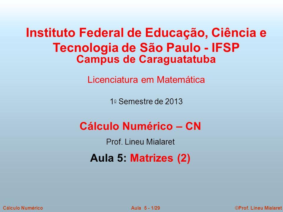 ©Prof. Lineu MialaretAula 5 - 1/29Cálculo Numérico Cálculo Numérico – CN Prof. Lineu Mialaret Aula 5: Matrizes (2) Instituto Federal de Educação, Ciên