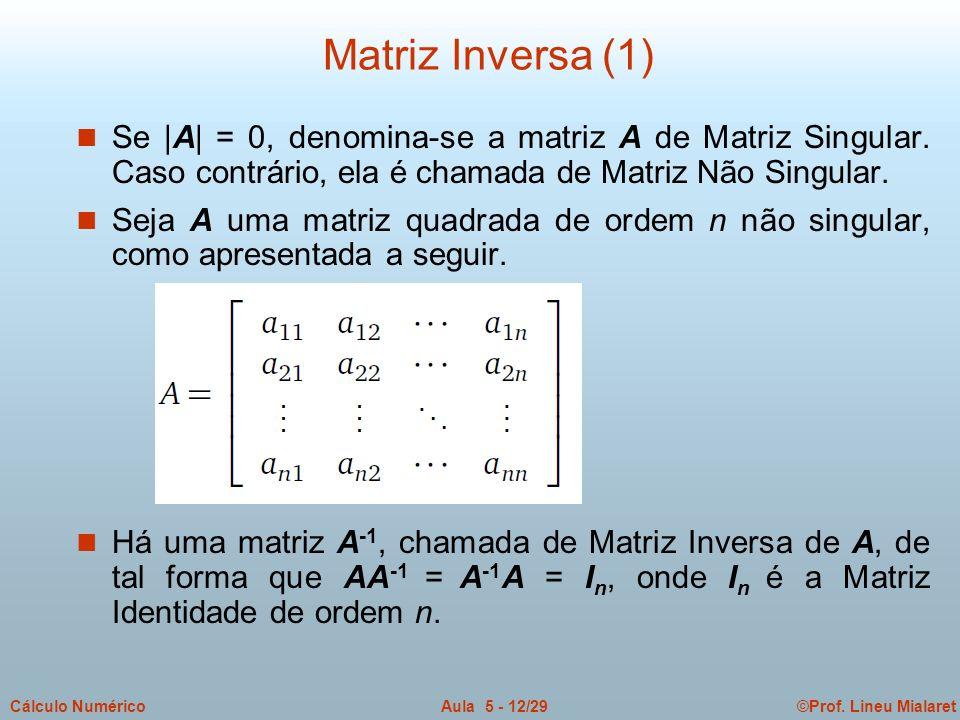 ©Prof. Lineu MialaretAula 5 - 12/29Cálculo Numérico n Se |A| = 0, denomina-se a matriz A de Matriz Singular. Caso contrário, ela é chamada de Matriz N