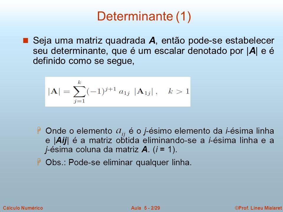 ©Prof. Lineu MialaretAula 5 - 2/29Cálculo Numérico Determinante (1) n Seja uma matriz quadrada A, então pode-se estabelecer seu determinante, que é um