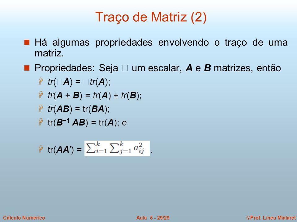 ©Prof. Lineu MialaretAula 5 - 29/29Cálculo Numérico n Há algumas propriedades envolvendo o traço de uma matriz. Propriedades: Seja um escalar, A e B m