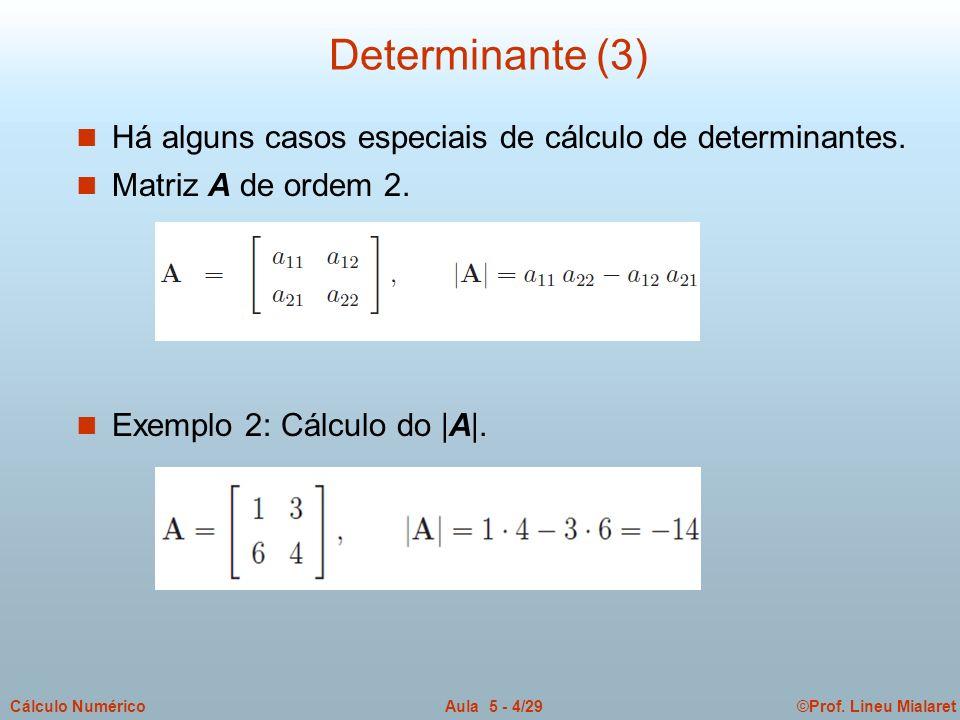 ©Prof. Lineu MialaretAula 5 - 4/29Cálculo Numérico Determinante (3) n Há alguns casos especiais de cálculo de determinantes. n Matriz A de ordem 2. n