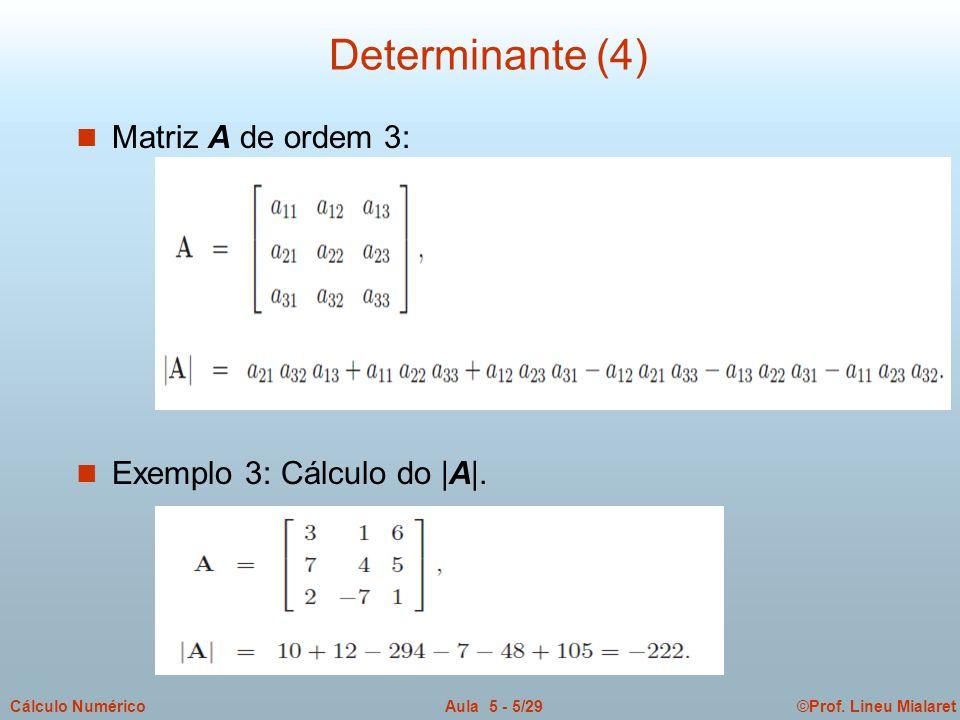 ©Prof. Lineu MialaretAula 5 - 5/29Cálculo Numérico Determinante (4) n Matriz A de ordem 3: n Exemplo 3: Cálculo do |A|.