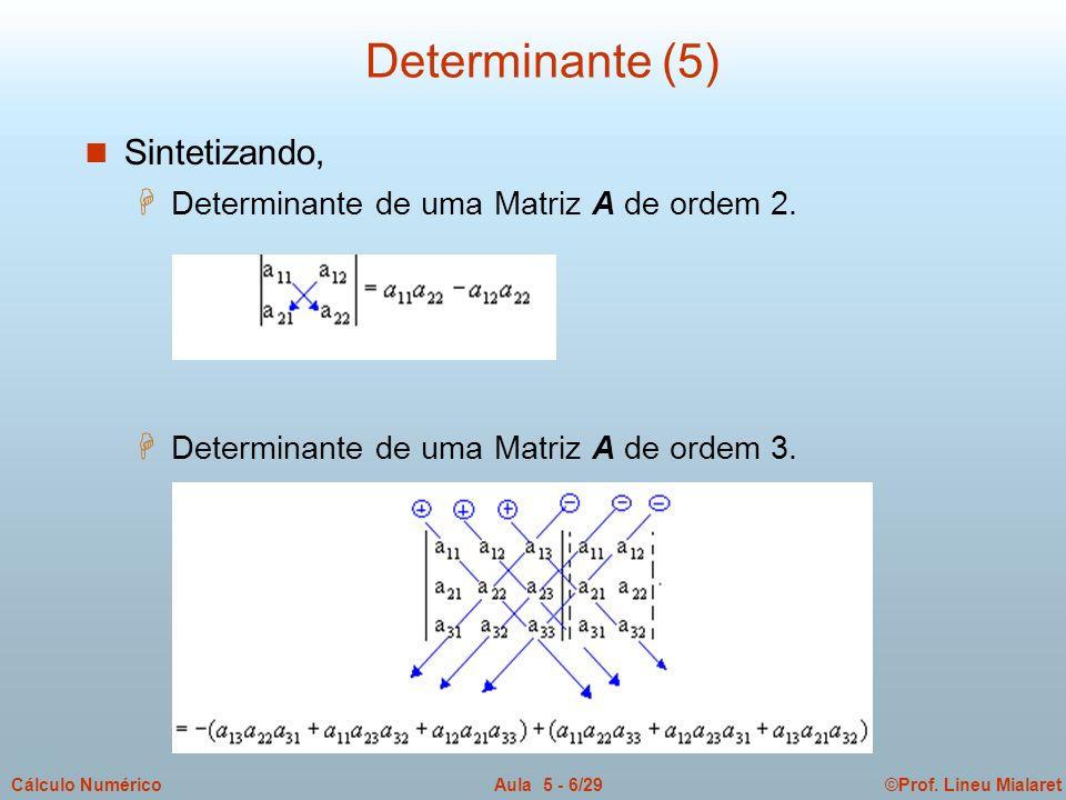 ©Prof. Lineu MialaretAula 5 - 6/29Cálculo Numérico Determinante (5) n Sintetizando, H Determinante de uma Matriz A de ordem 2. H Determinante de uma M