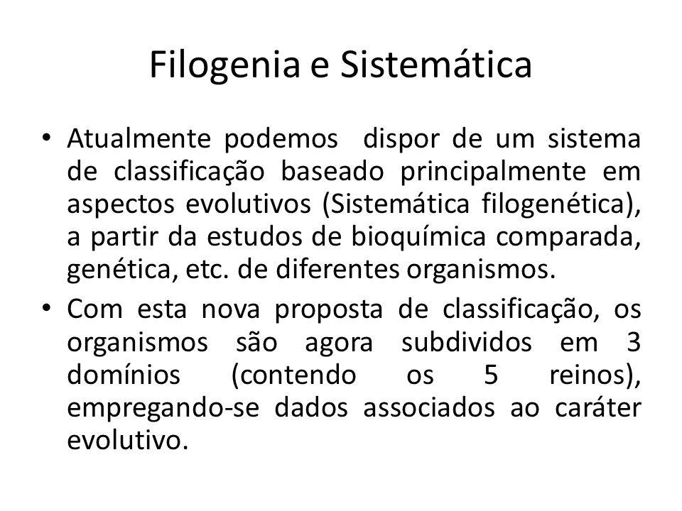 Atualmente podemos dispor de um sistema de classificação baseado principalmente em aspectos evolutivos (Sistemática filogenética), a partir da estudos